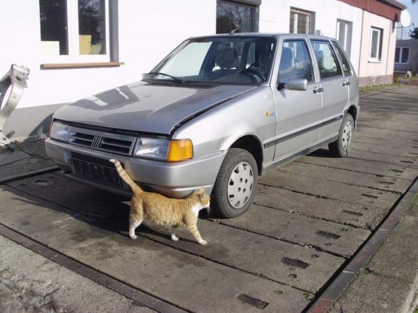 szary-samochod